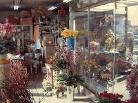 中山生花店の店内写真